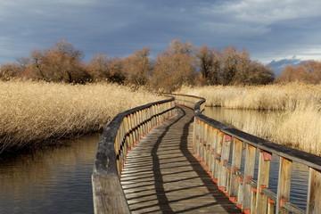 Camino sobre el rio