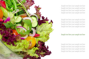Vegetable salad in bowl isolated with space for text. Background