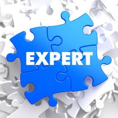 Expert - Concept on Blue Puzzle.