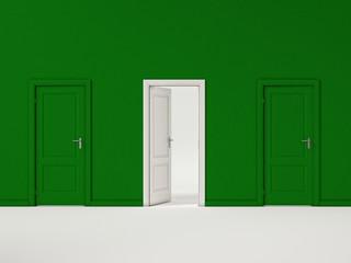 White Door on Green Wall, Illustration Business Door