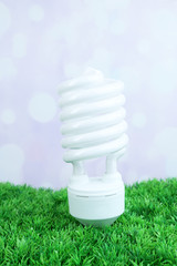 Energy saving light bulb on green grass, on light background