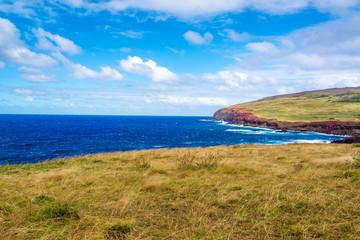 Easter Island Coastal Landscape