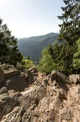 Rochers et sommets en montagne