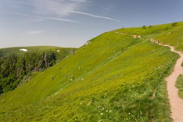 Sentier sur les crêtes des Vosges