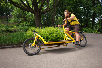Bicycle messenger with cargo bike speeding