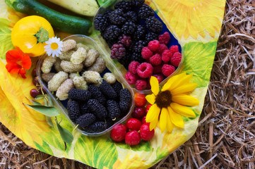 Summer composition of blackberries ,raspberries  and mulberries