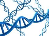 DNA - white Background