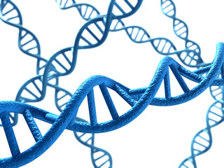 DNA - white Background