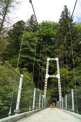 天竜峡 つつじ橋の橋脚