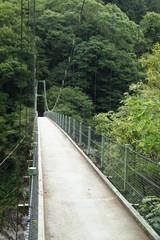 天竜川にかかるつり橋 つつじ橋