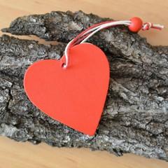 Rotes Holzherz auf Baumrinde