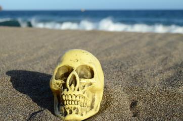 Skull on Sand