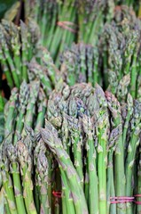 Bundles of asparagus © Arena Photo UK