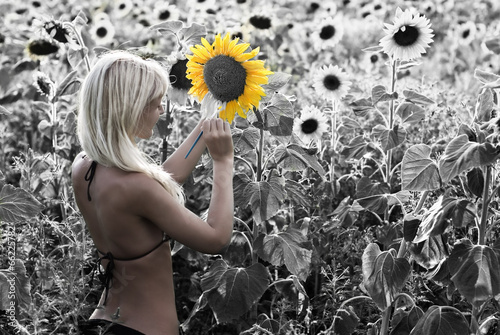 Obraz w ramie The blond girl painting the sunflower field in the colors
