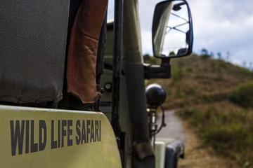 Safari jeep detail