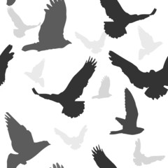 Vector birds background seamless pattern