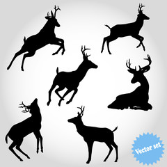 Vector set silhouette deer on white background