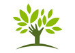 logo natural helping hand tree  vector