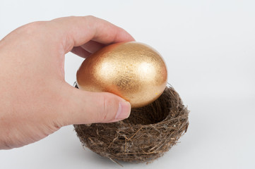 Putting golden egg in nest