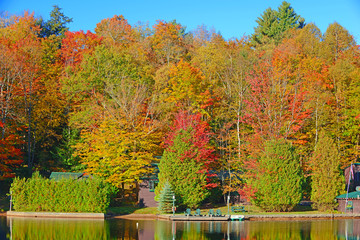 Fall foliage with reflection in lake