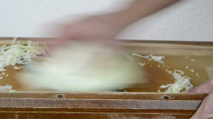 Herstellung von Sauerkraut, hobeln von Spitzkraut