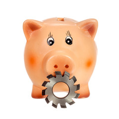 Circular cutter and piggy bank