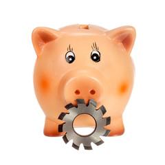Circular cutter and piggy bank