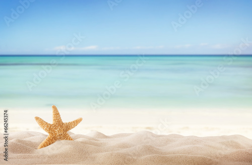 canvas print picture Summer beach with starfish