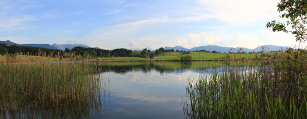 Froschhauser See Panorama
