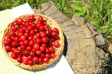 Sweet cherries on wicker stand with napkin on glade