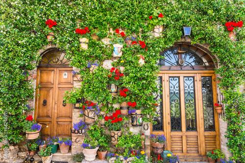 Fototapeta Ingresso di casa con fiori