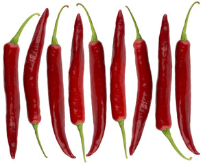 Red chili peppers isolated on white background