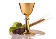 holy communion - 66248393