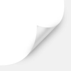 White Curved Corner paper