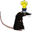Rat with a light bulb