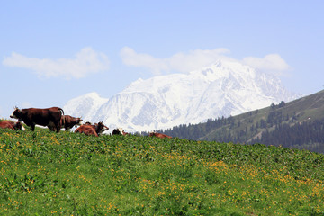 Le Mont Blanc depuis le col des Aravis