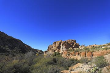 Sonoran Upland Area, AZ