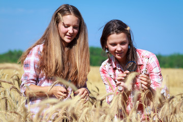 Farmer's daughters in the field
