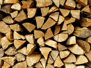 Woodpile Kindling Firewood Detail