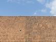Dachziegel in Wellenform und unterschiedlicher Schattierung