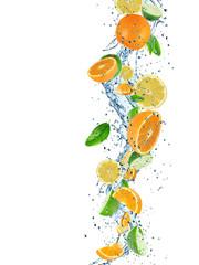 Citruses with water splash