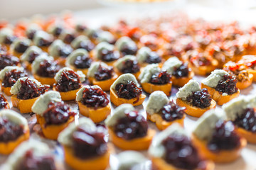 Appetizing various canapes