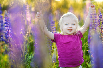 Cute toddler girl in blooming lupine field