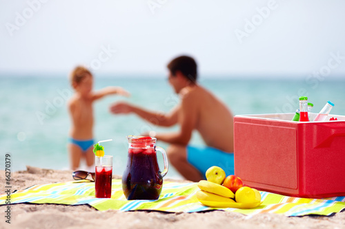family picnic on the beach - 66270379
