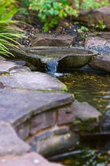 Patio Garden - Zen pond