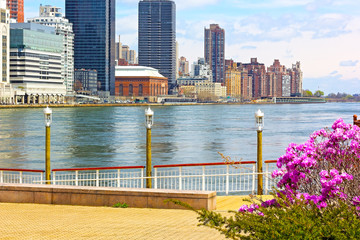 View on Manhattan from Roosevelt Island in spring