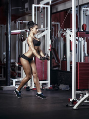 fitness woman doing triceps exercises in the gym