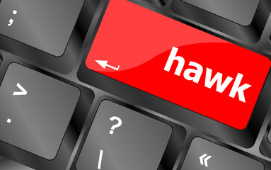 hawk word on computer pc keyboard key