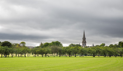 Green lawn plum trees at Meadows park, Edinburgh