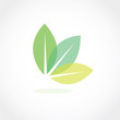 leaf icon vector - 66286504